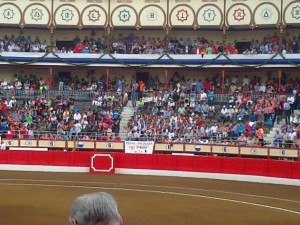 plaza toros roa