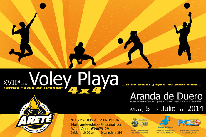 cartel volei playa